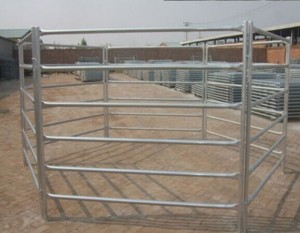 Straight feet 5ft or 6ft high horse panels