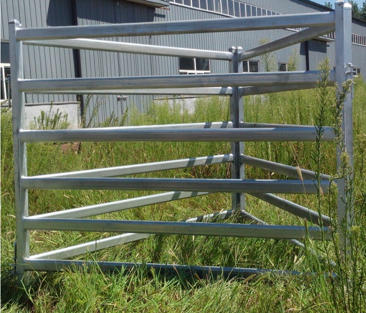 1.8×2.1m galvanized cattle panels Oval rails Featured Image