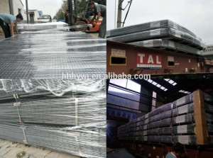 Galvanized welded wire mesh sheet 3000x2400mm